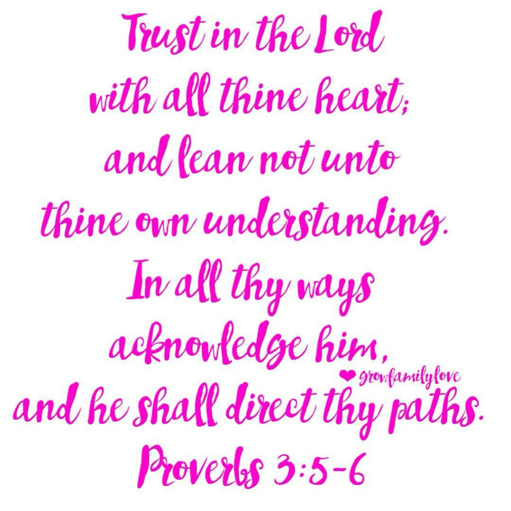 ❤ Trust in the Lord with all thine heart; and lean not unto thine own understanding. In all thy ways acknowledge him, and he shall direct thy paths. ❤ ~ Proverbs 3:5-6