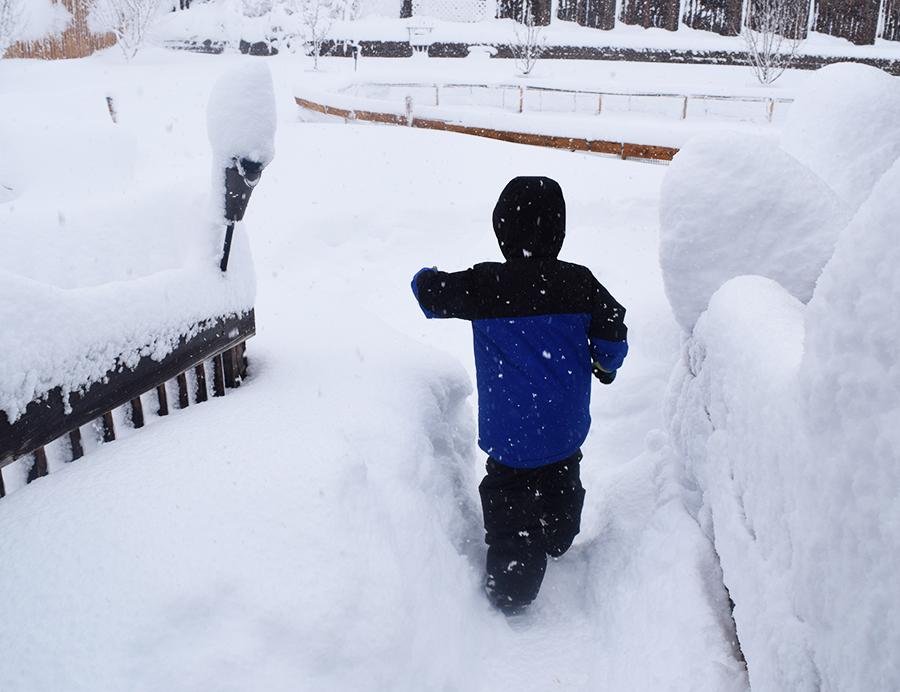 Noah's first big snowstorm